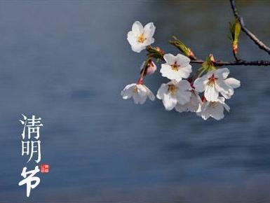 qingming-festival1